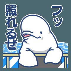 白イルカは尾も白い