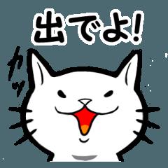 ソシャゲ猫