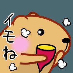 きゃぴばら【死語】