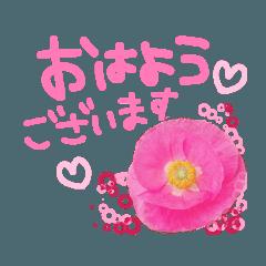 お花がいっぱいスタンプ