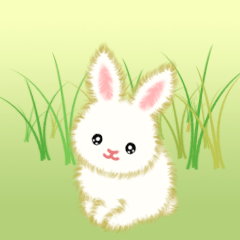 [LINEスタンプ] 赤ちゃんウサギ 毎日使う言葉