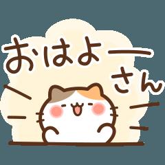 みけの関西弁