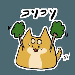 ハチタロウ、ワンよ〜! 〜オノマトペ編〜