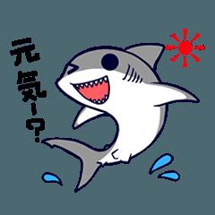 [LINEスタンプ] いろんなサメ (1)