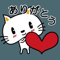大福ネコの日常 第2弾