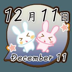 12月11日記念日うさぎ