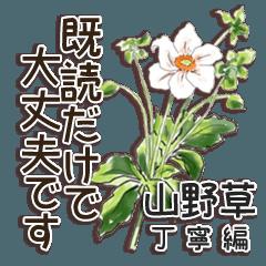 山野草 丁寧編 Ⅲ