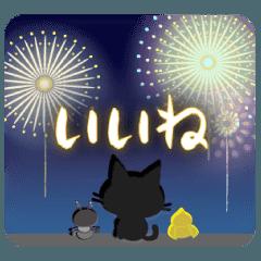 黒猫ちゃん・夏の日々。