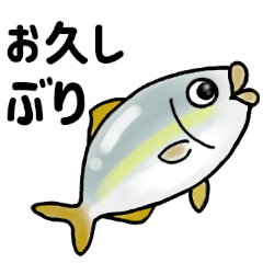 毎日!海の生き物