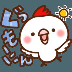 毎日しろちゃん8(あいさつ♥返事)