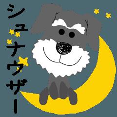 愛犬家の毎日スタンプ*シュナウザーcute