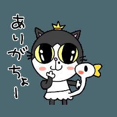コテツ&コハク(ダジャレ)