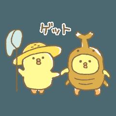 ぴよこ豆4(夏)